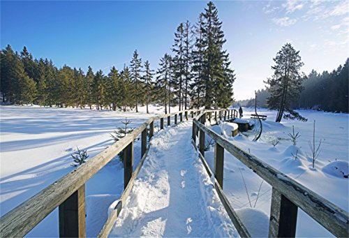 Laeacco Winterland Backdrop 7x5ft Vinyl Photography Background Curving Wooden Bridge Undefiled Snowfield Infinite Pine Forest Baby Child Shoot Wintery Scenic Party Banner Indoor Decoration Wallpaper ()