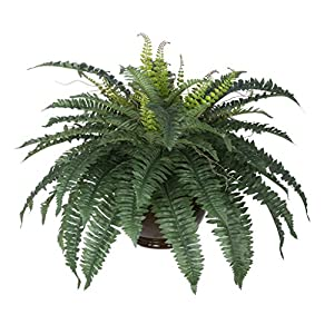 House of Silk Flowers Artificial Fern in Brown Fishbowl Vase 116