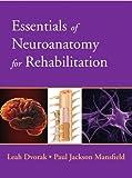 Essentials of Neuroanatomy for Rehabilitation 1st Edition