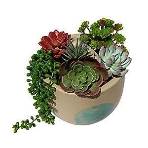 Plantastyck Artificial Succulent Plant Picks Unpotted Assorted Faux Echeveria - Fake Succulent 6 Pack in Greens & Red for Floral Arrangement Home Decor Wedding Fairy Garden Bouquet Centerpiece 4
