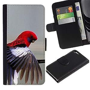 Billetera de Cuero Caso Titular de la tarjeta Carcasa Funda para Apple Iphone 5 / 5S / red parrot grey pastel tropical bird feather / STRONG
