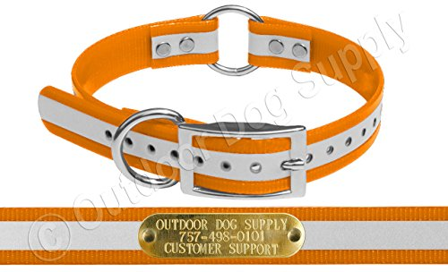 (Outdoor Dog Supply 1