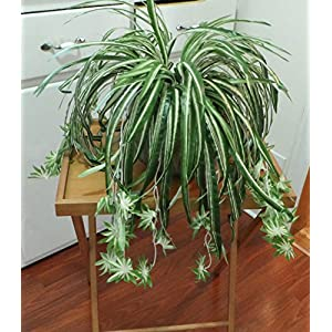2 Chlorophytum Grass Vine Artificial Flower Bush Spider Hanging Home Decoration Flowers Artificial Arrangement 25