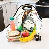 Newplenty Lunch Bag Waterproof Picnic Tote Insulated Cooler Zipper Box, Totoro