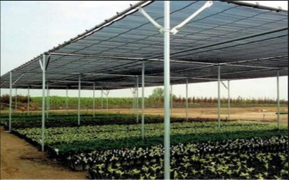 EasyShade 60% Black Shade Cloth Taped Edge with Grommets UV 20ft x 24ft