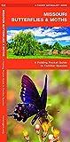 Missouri Butterflies & Moths: A Folding Pocket Guide to Familiar Species (A Pocket Naturalist Guide)