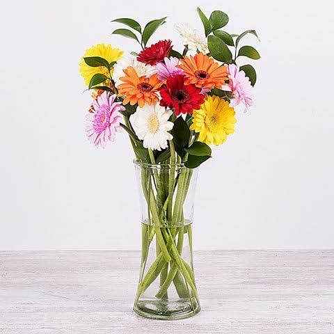 Fiori 24 Ore.Fiori Freschi Florachic 12 Gerbere Multicolore Invio Gratis In