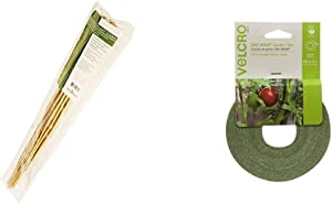 Hydrofarm HGBB4 4' Natural, Pack of 25 Bamboo Stake, 4 Foot, Tan & Velcro Brand Plant Ties | 45 ft x 1/2 in Roll | Alternative to Twine, Reuse and Adjust with No Knots | Green (91384)