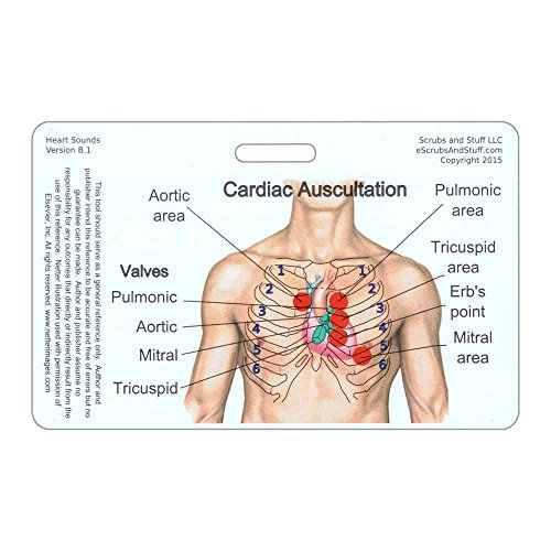 UPC 640925995847, Heart Sounds Diagram Horizontal Badge Reference Card (1 Card)