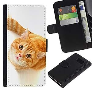 OMEGA Case / Samsung Galaxy S6 SM-G920 / Cute Curious Orange Cat / Cuero PU Delgado caso Billetera cubierta Shell Armor Funda Case Cover Wallet Credit Card