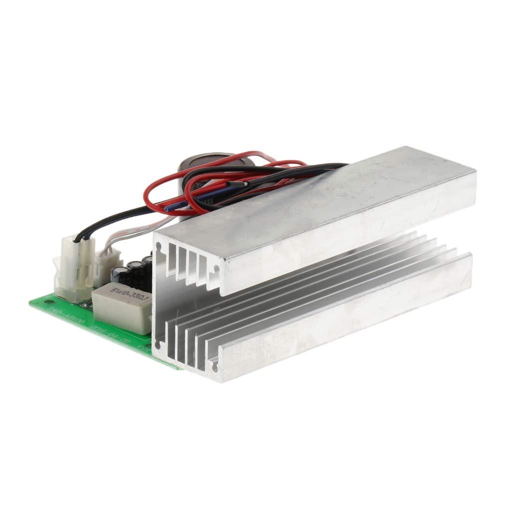 perfk 100W Mono Amplificador de Potencia DIY con Disipador de Calor