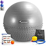 Sportneer Exercise Ball, Dual-Sided Balance Yoga Ball with Inflation Pump, Massage Ball, Workout Guide and Carrying Bag, Silver Review