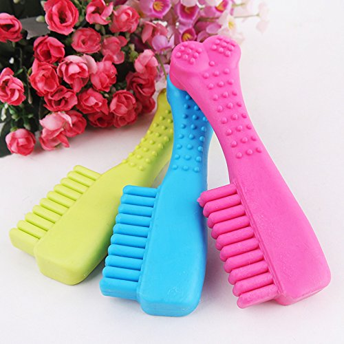 Pet Supplies : Resistant Rubber Toothbrush Shaped Chew Toy for Pets Dogs Cats : Amazon.com