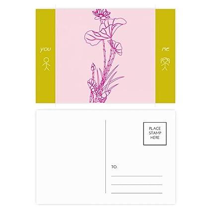 Amazoncom Lotus Leaf Lotus Flower Reed Flower Plant Friend