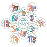 MairGwall Baby Premium Infant Monthly Milestone Stickers - First Year Happy Animal Sticker 1-12 Month + 1 Baby Boy Stickers