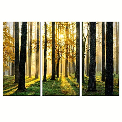 sechars - Forest Canvas Wall Art,Morning Scene with Sun Rays Picture Canvas Prints Forest Landscape Painting Giclee Artwork Printed Framed,Modern Office Home Living Room Decoration Ready to Hang