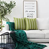 HOME BRILLIANT Lace Striped Europe Pillow Sham Covers Large Cushion Covers for Patio, 24x24 inches(60x60cm), Set of 2, Lime Green