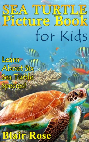 Sea Turtle Picture Book For Kids: Learn About Six Sea Turtle Species- Green Sea Turtle, Leatherback Sea Turtle, Loggerhead Sea Turtle, Hawksbill Sea Turtle.!