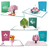 Lovepop Everyday 5 Pack 3D popup greeting card gifts