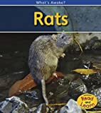 Rats, Patricia Whitehouse, 1432926047