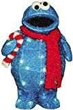 ProductWorks 18-Inch Pre-Lit Sesame Street Cookie Monster with Candy Cane Christmas Yard Decoration, 35 Lights