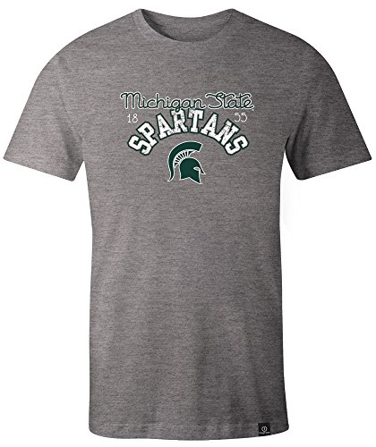 NCAA Michigan State Spartans Women's Classic Arch Script Image One Triblend Short sleeve T-Shirt, Medium,HeatherGrey