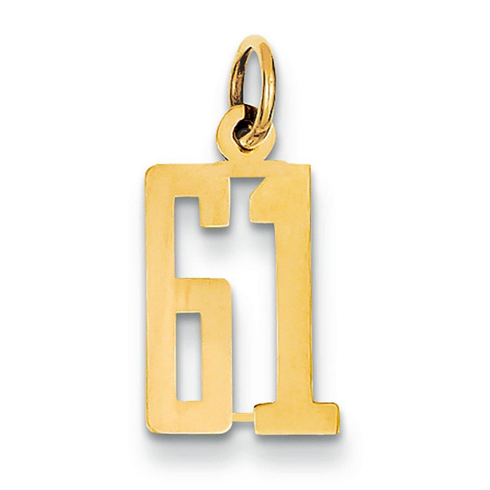 14K Yellow Gold Small Elongated 61 Charm Pendant