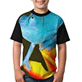 Blue Chameleon Youth Girl's Graphic Short Sleeve Funny Round Neck Tshirts Small