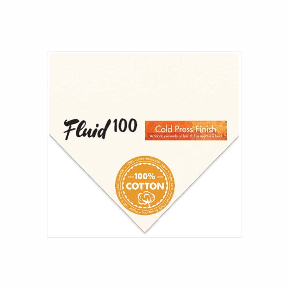 Handbook Paper Fluid 100 Watercolor Cp 300Lb 22X30 Sht 10/Pk by Handbook Paper