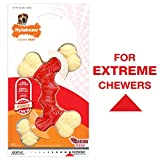 Nylabone Double Bone Power Chew Long-Lasting Dog Toy