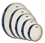 REMO Thinline Frame Drum, Fixed, RENAISSANCE, 10' x 1-9/16'