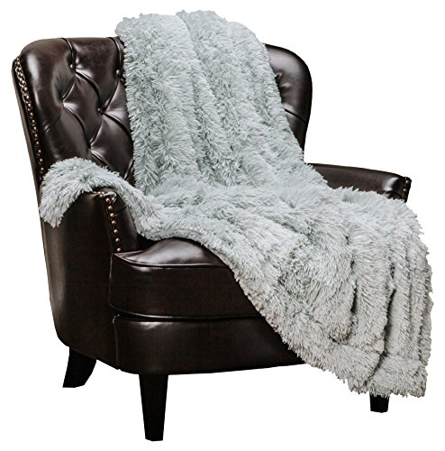 Chanasya Super Soft Shaggy Longfur Throw Blanket | Snuggly Fuzzy Faux Fur Lightweight Warm Elegant Cozy Plush Sherpa Microfiber Blanket | for Couch Bed Chair Photo Props - 50