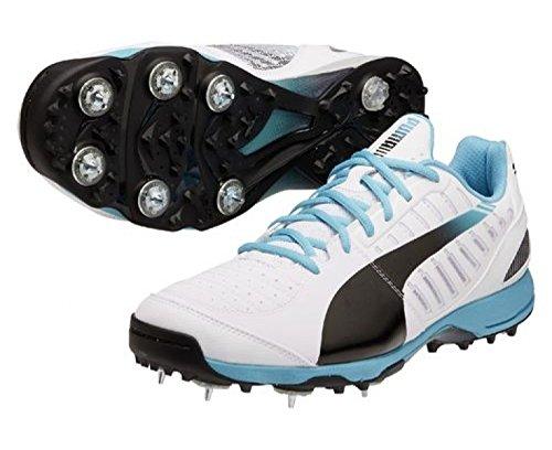 502178fa64a1 Puma Men s evoSPEED Cricket Spike 1.3 White