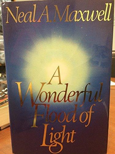 Wonderful Flood Of Light in US - 2