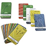 The Simple Tarot Deck Starter Kit: Beginner Tarot