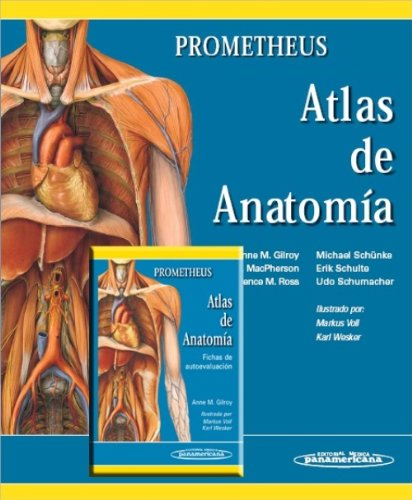 Amazon.fr - Atlas de anatomia/ Atlas of Anatomy: Prometheus - GILROY ...