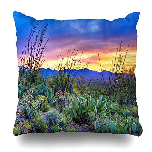 (Ahawoso Throw Pillow Cover Square 16x16 Inches Desert Sunset Saguaro Park Near Tucson Nature Arizona Bloom Blooming Buckhorn Cholla Cactus Design Zippered Cushion Pillow Case Home Decor Pillowcase )