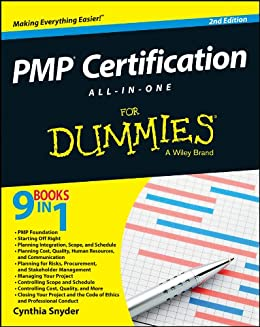 PMP Certification All-in-One For Dummies por [Snyder, Cynthia Stackpole]