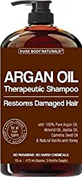 Argan Oil Shampoo Restores Hair - Argan Oil for Hair, Increases Shine and Deeply Nourishes - Safe for All Hair Types and Color Treated Hair - 16 oz Bottle with Pump