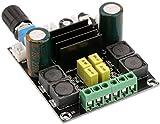 Yeeco Digital Amplifier Board DC 12-24V 50W+50W