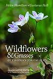 Wildflowers & Grasses of Virginia's Coastal Plain