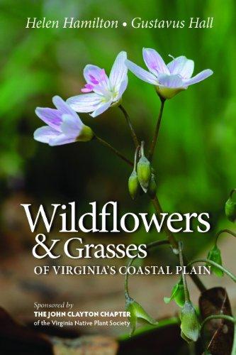 Coastal Wildflowers - Wildflowers & Grasses of Virginia's Coastal Plain