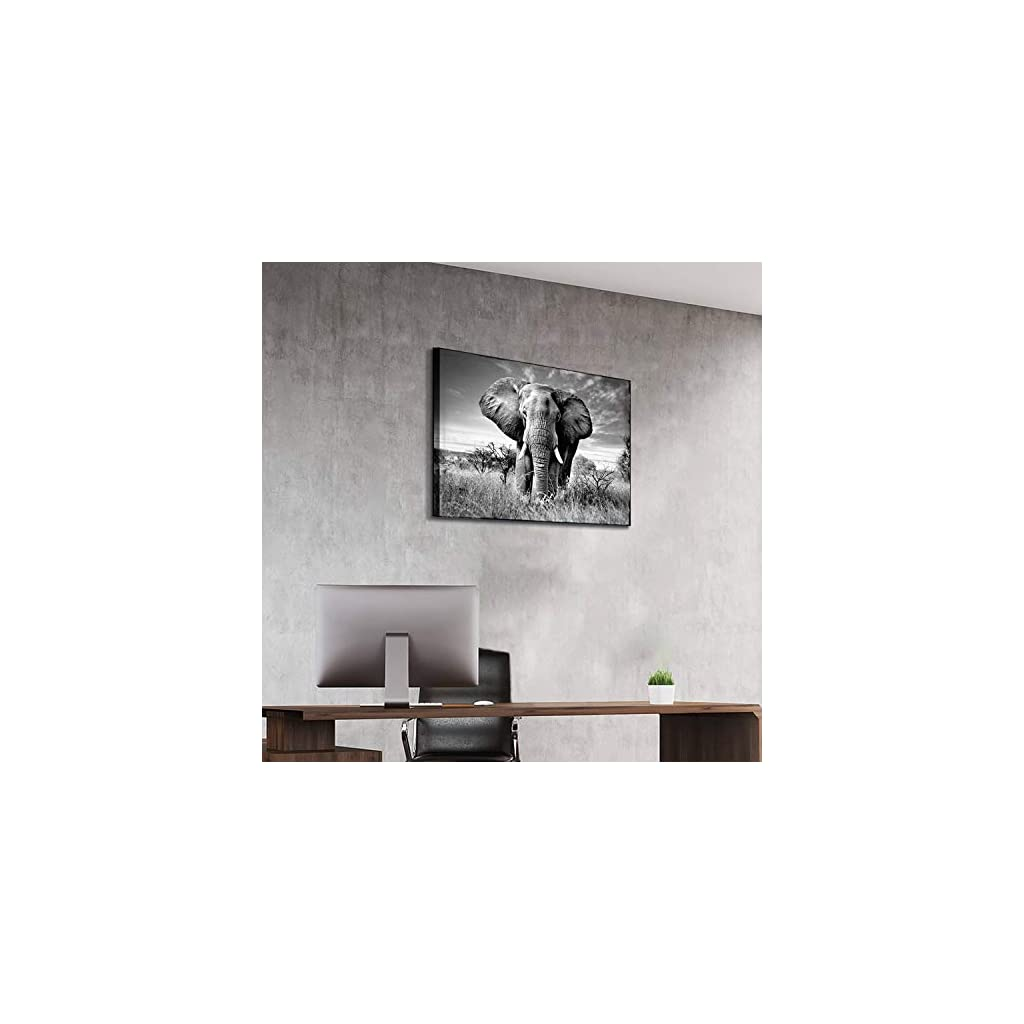 Wall Art Canvas Posters and Paintings