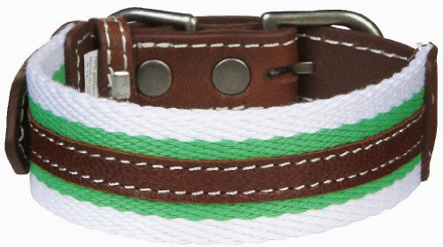 The Life of Ryley Rugby Collar - Green - Medium