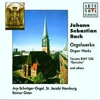 Orgelwerke (Die Arp-Schnitger-Orgel der St. Jacobi Kirche Hamburg)