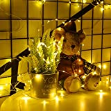 Govee String Fairy Lights, 16.4 Feet Remote Fairy