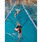 StretchCordz Stationary Swim Trainer by NZ Manufacturing