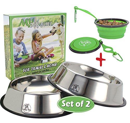 xl slow feed dog bowl - 9