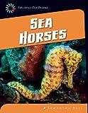 Sea Horses, Samantha Bell, 1624316042