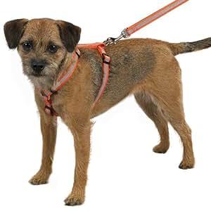 Guardian Gear Nylon Reflective Dog Harness, 8-14-Inch, Orange